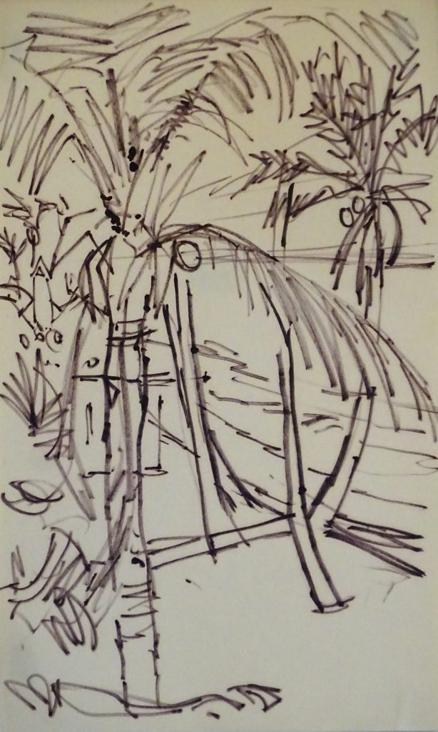 Drawing of palm trees
